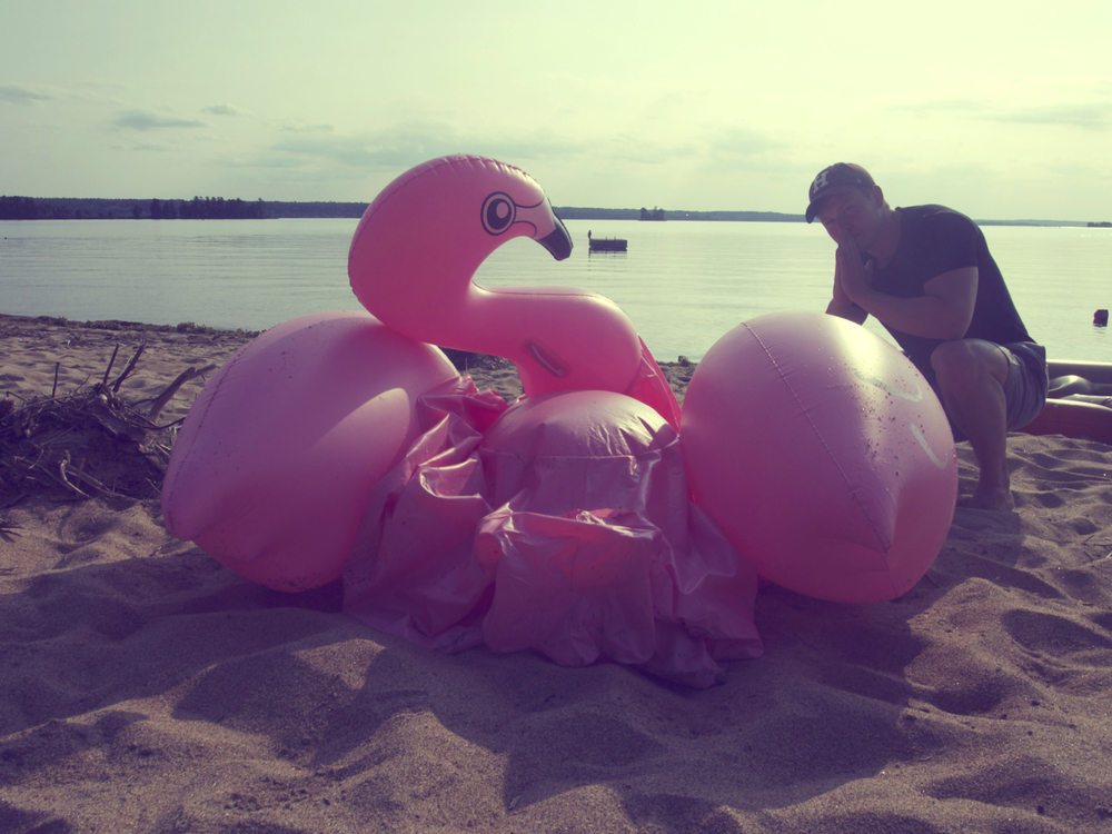 Pictured: Flamingo { R I P } x Dave Foster
