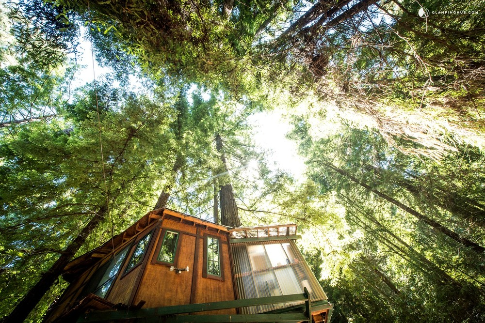 Glamping Tree House California