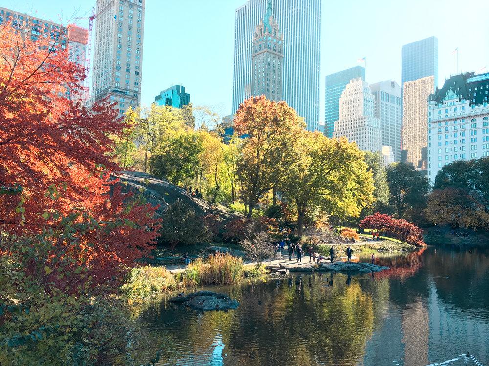 newyork-44.jpg
