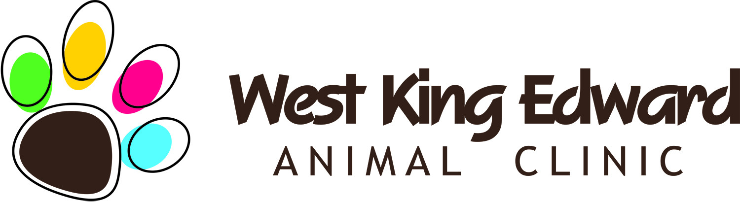 West King Edward animal clinic