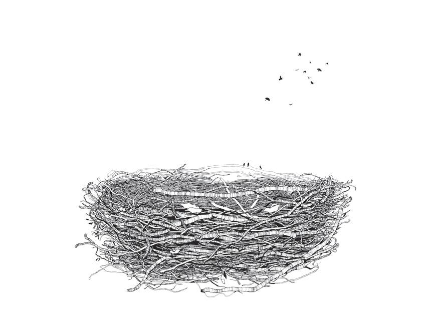 Line Drawing Nest : The nest u mister vi