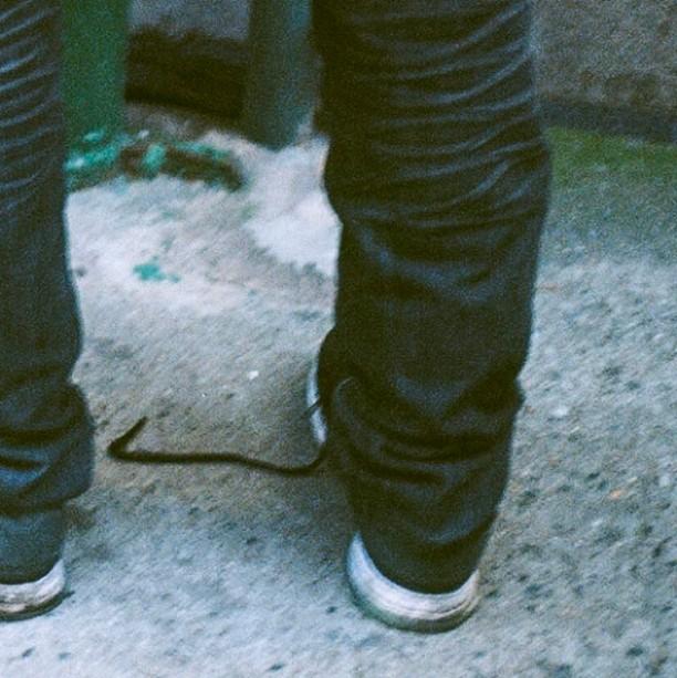 1 of 6 |  #35mm #filmisnotdead #staybrokeshootfilm #nycspc #nycstreetphotography