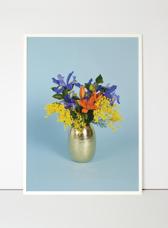 ram-flora-indoor.jpg