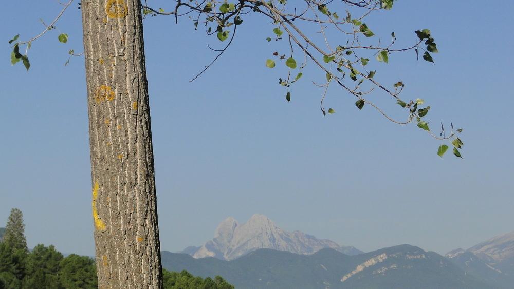 El Pedraforca vist des de La Pobla de Lillet, poble on hi ha l'obrador de L'aranyonet.