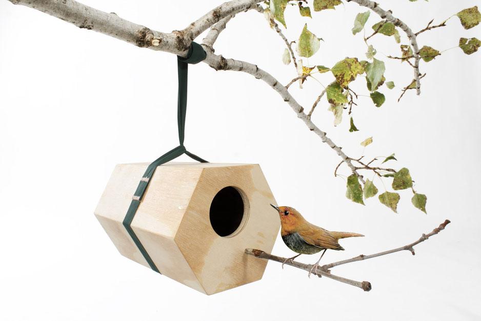 caseta-ocells-utoopic.jpg