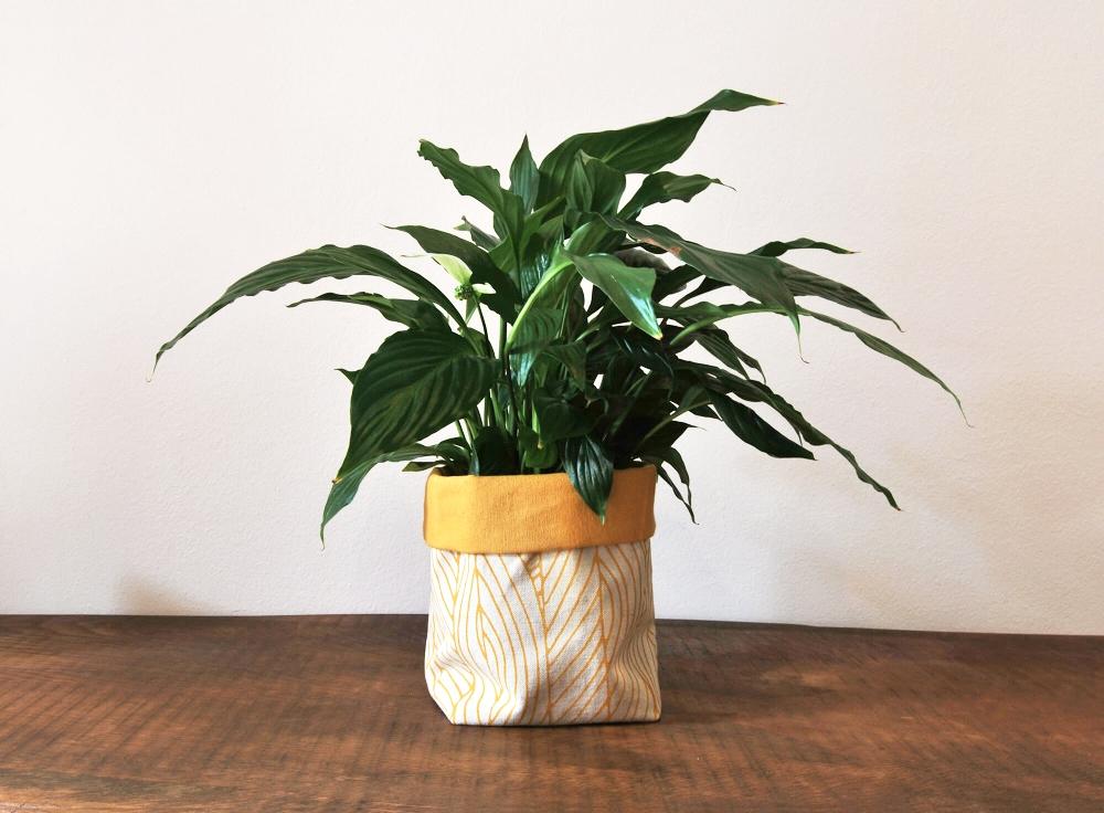 kokorome-serigrafia-teixit-ecologic-cistell-planta.jpg