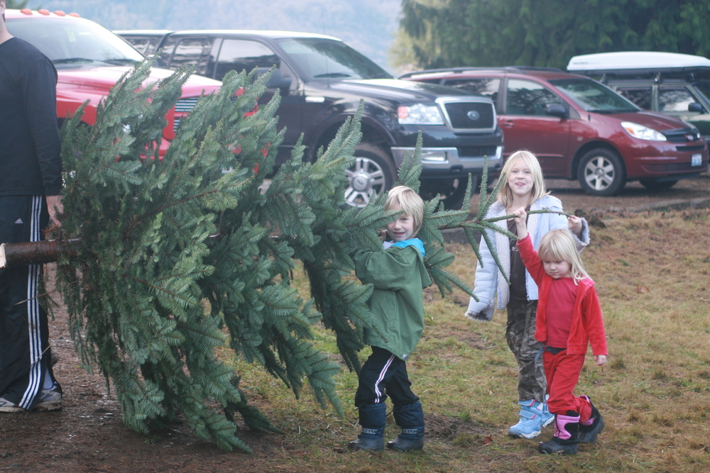 Kids carrying their tree