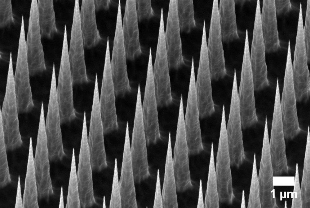 Silicon nanoneedles © Stuart Higgins 2018