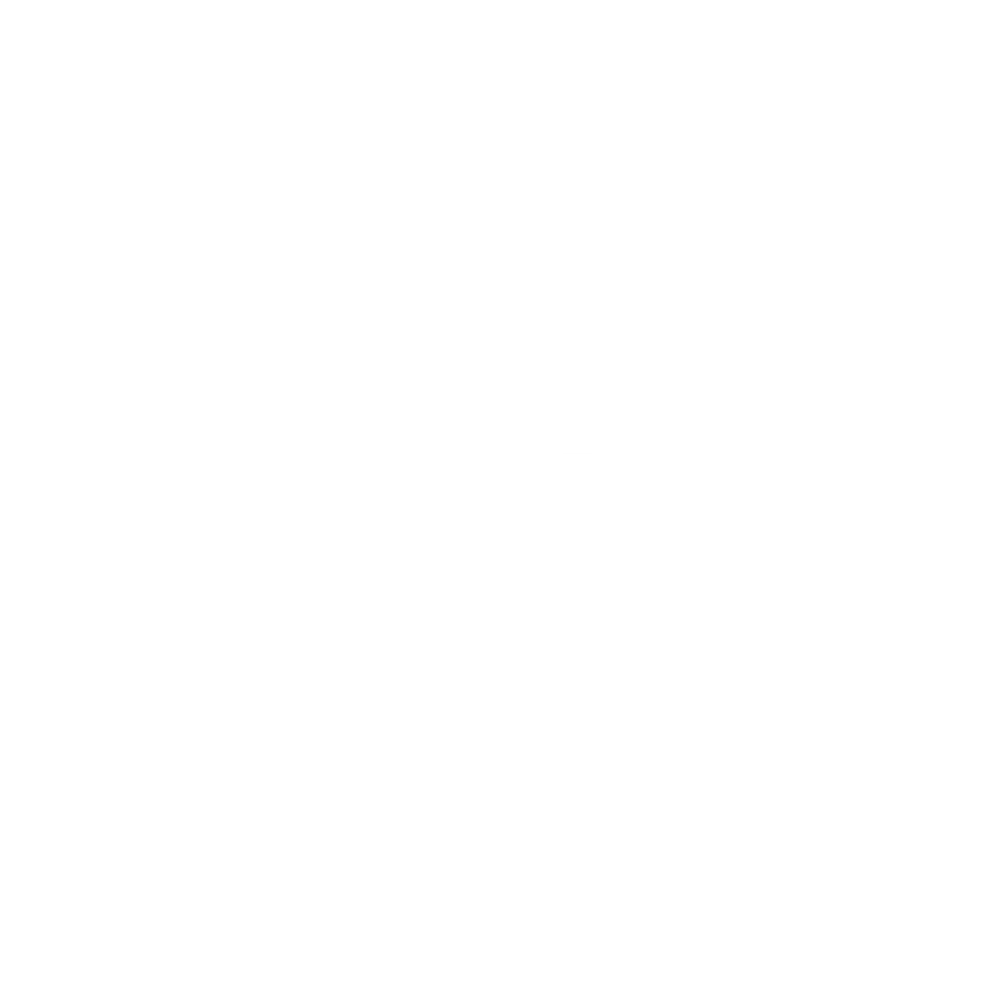 All Is Amazing Client_12 Emilio Pucci.png