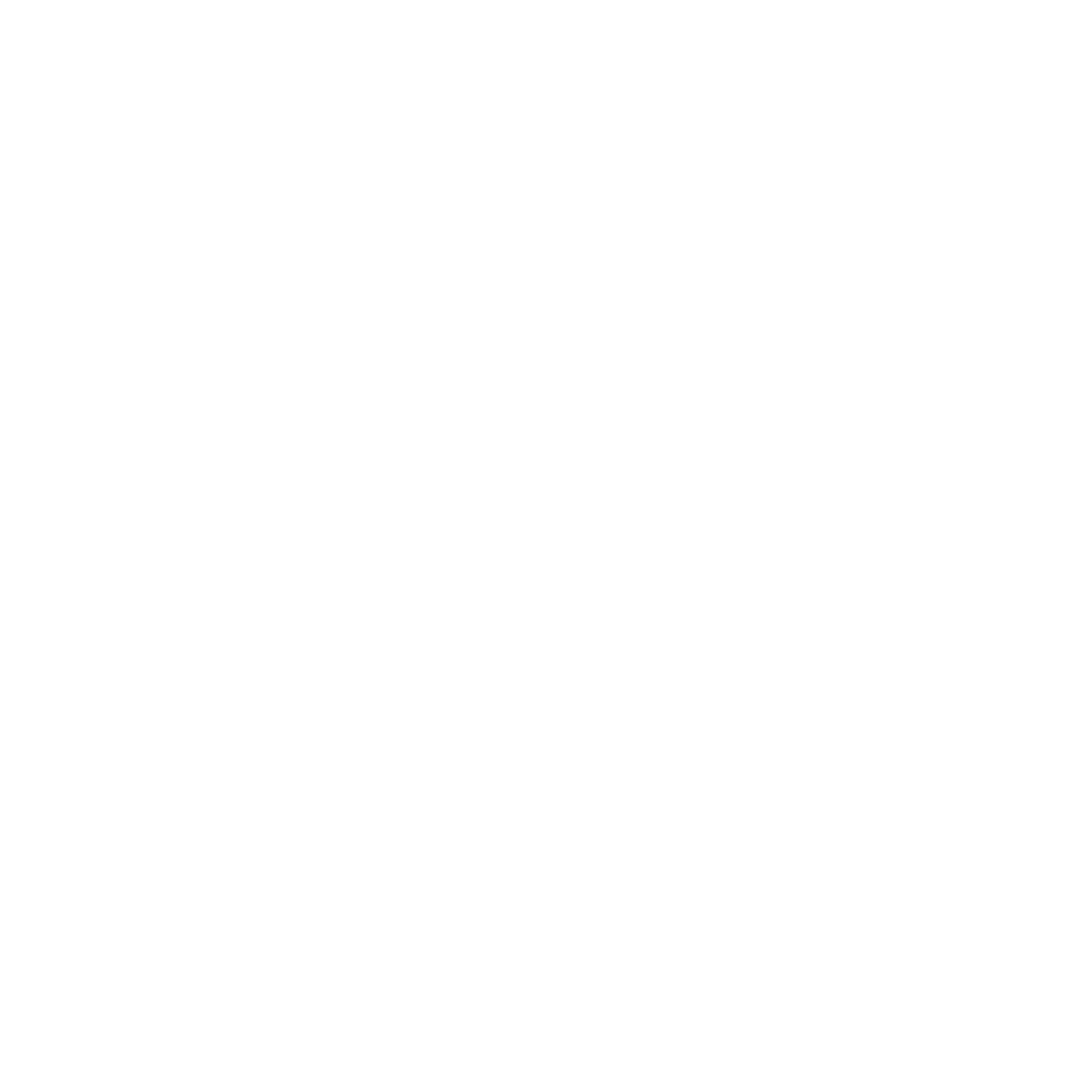 All Is Amazing Client_23 Air Asia.png