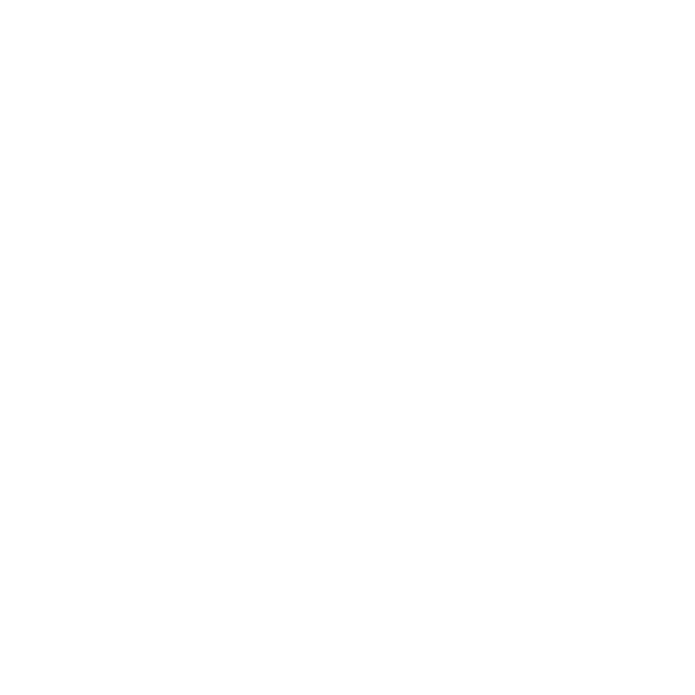 All Is Amazing Client_Toyota.png