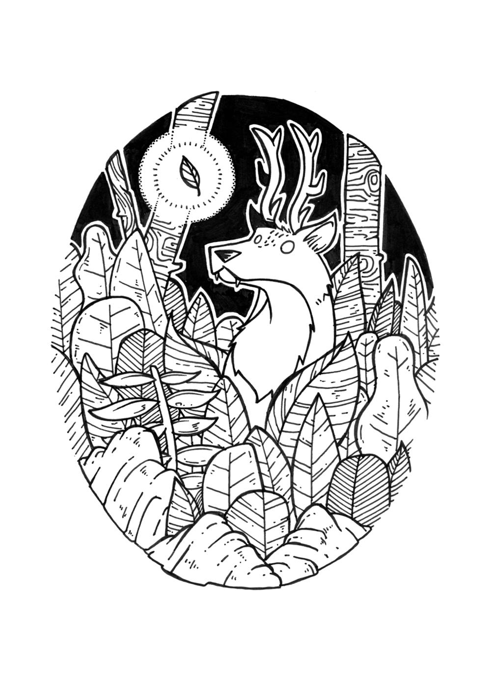 wolfdeer web.jpg
