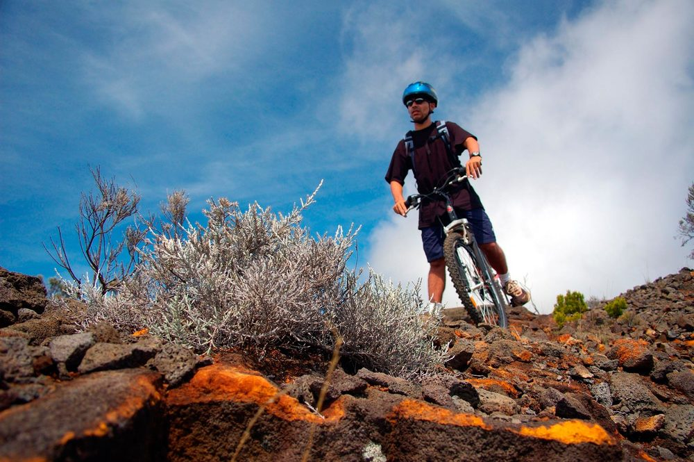 Séjour à thème vélo en Provence