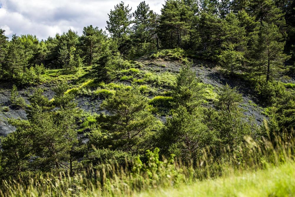 Terre des Baronnies : séjour immersion nature