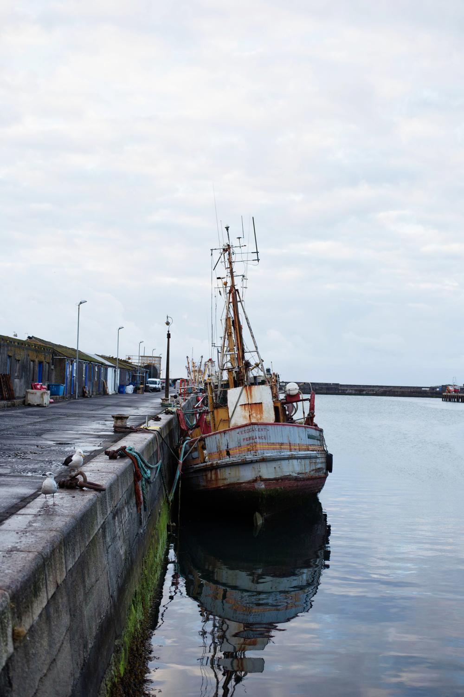 Beth-Druce-Newlyn-Harbour