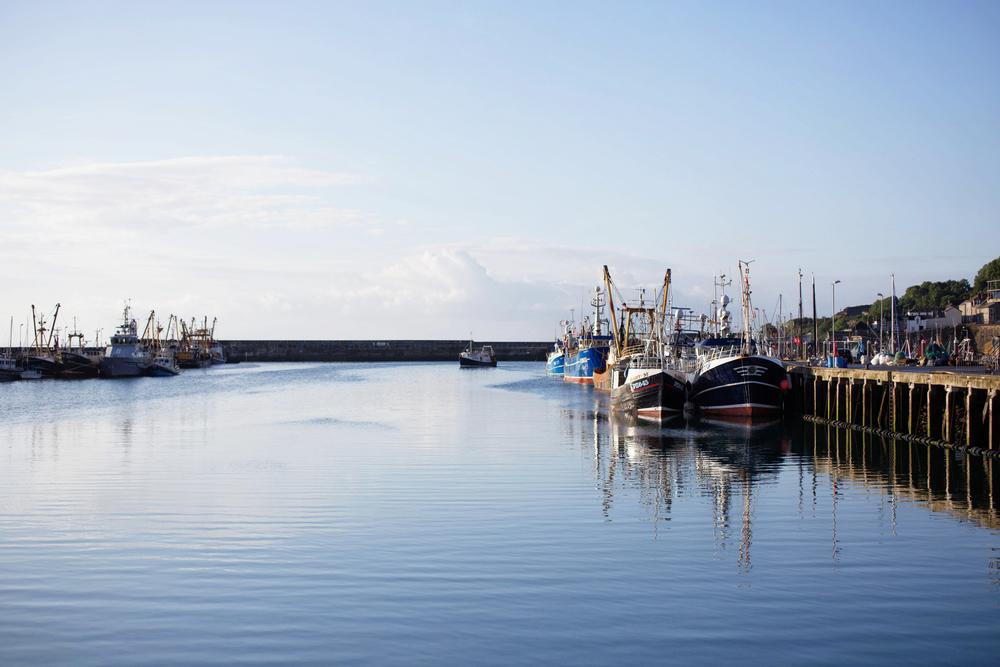 Beth-Druce-Newlyn-Harbour-005