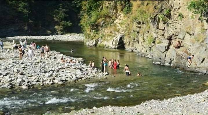 nirvana-river-resort-8.jpg