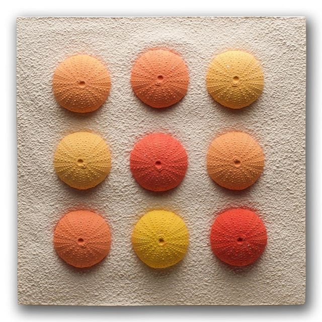 Kråkeboller, 20 x20cm.  #marina #marinlife #seaurchin #shells #colourful #orange #yellow #red #art #plaster #gylverart #echinoidea #textures #pattern #nine #9 #wallart #tactile #