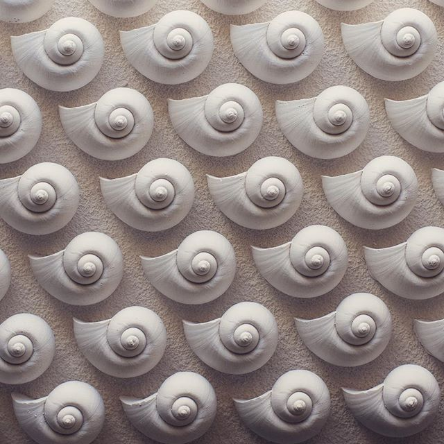 Work in progress,printing cards. Hopefully I'll be able to set up a webshop this year😊 #cards #shell #bangkok #nature #pattern #texture #gylver #bw #grey #snail #plaster #siliconmold  #textural #decoration #white #art #oslo #norway