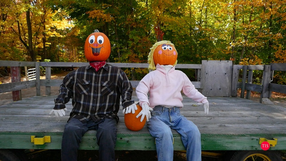 Pumpkintown USA