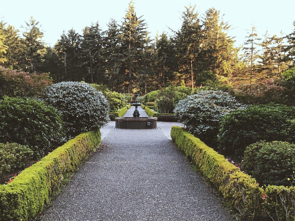 botanical garden 2.jpg