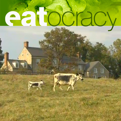 EATOCRACY BY CNN  December 10, 2012  To Save this Endangered Breed, Eat it