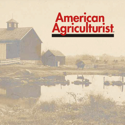 AMERICAN AGRICULTURIST June 12, 2013 And the Best Beef Was...