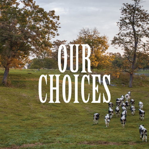 At Chapel Hill Farm, we believe our choices matter—they are what set us apart.