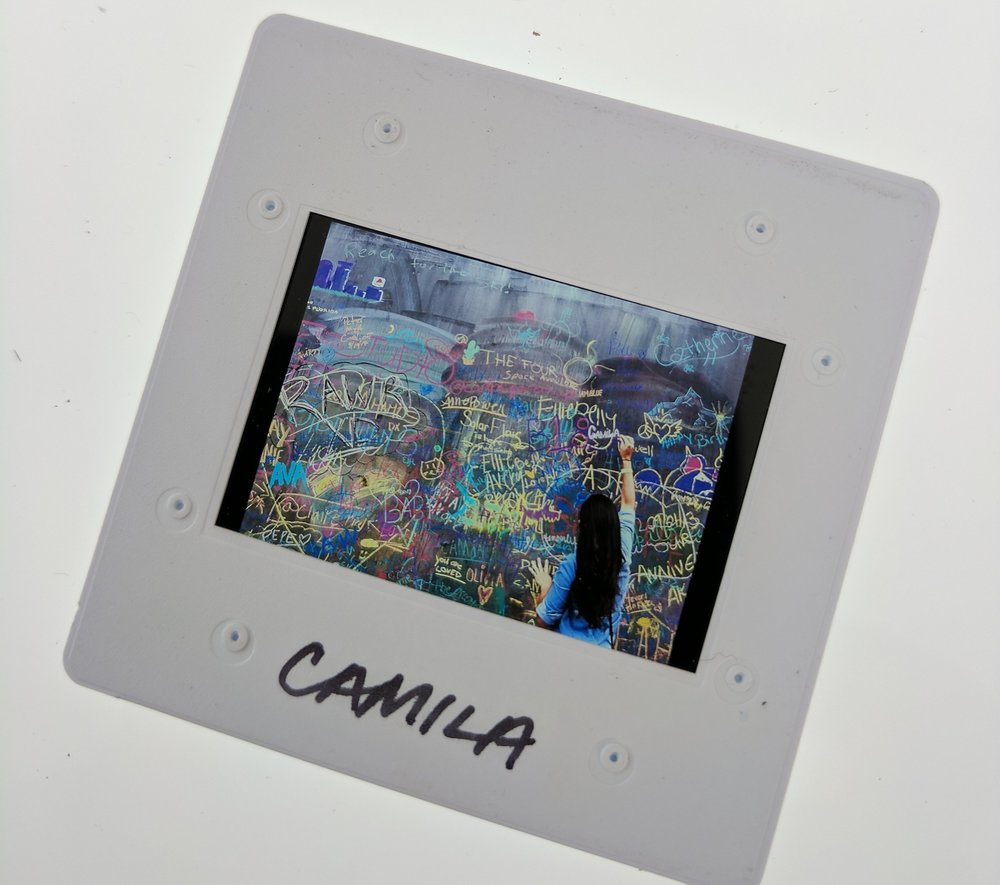 A slide with an image from Camila's collection.