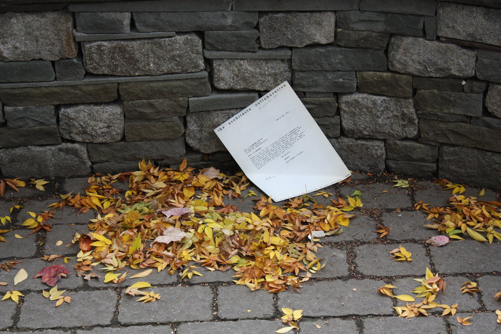Katarina Burin's poignant but empowering  We regret to inform you  rests among scattered leaves.