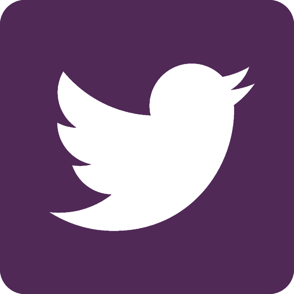 Twitter - Purple.png