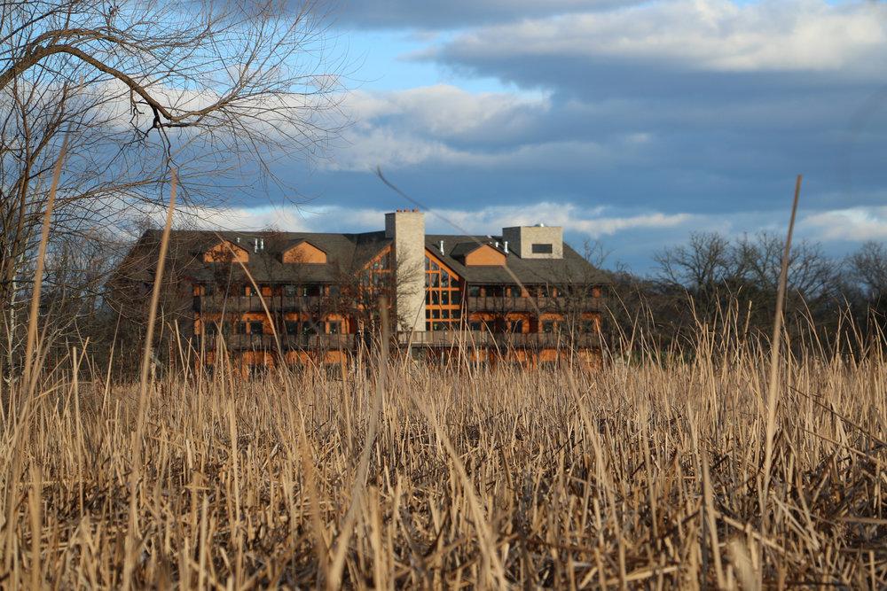 Marsh View.jpg