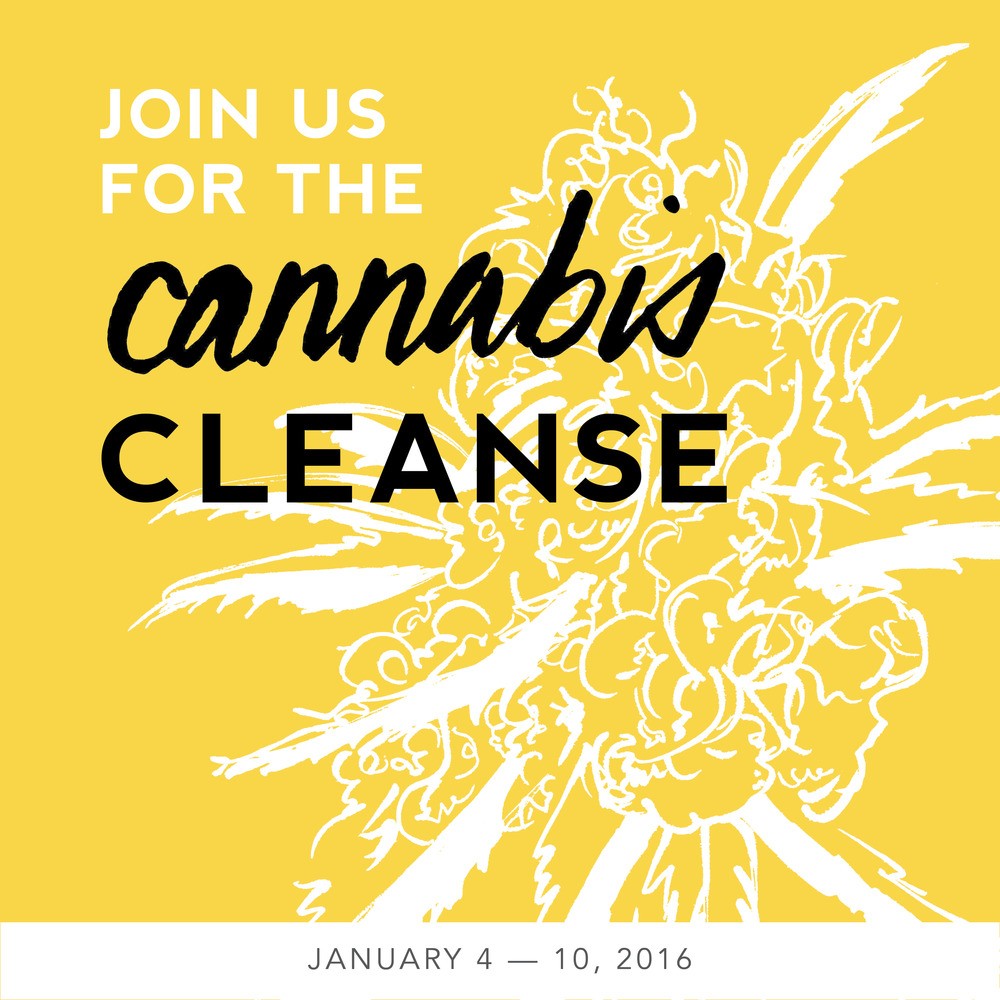 instagram-cannabiscleanse16.jpg