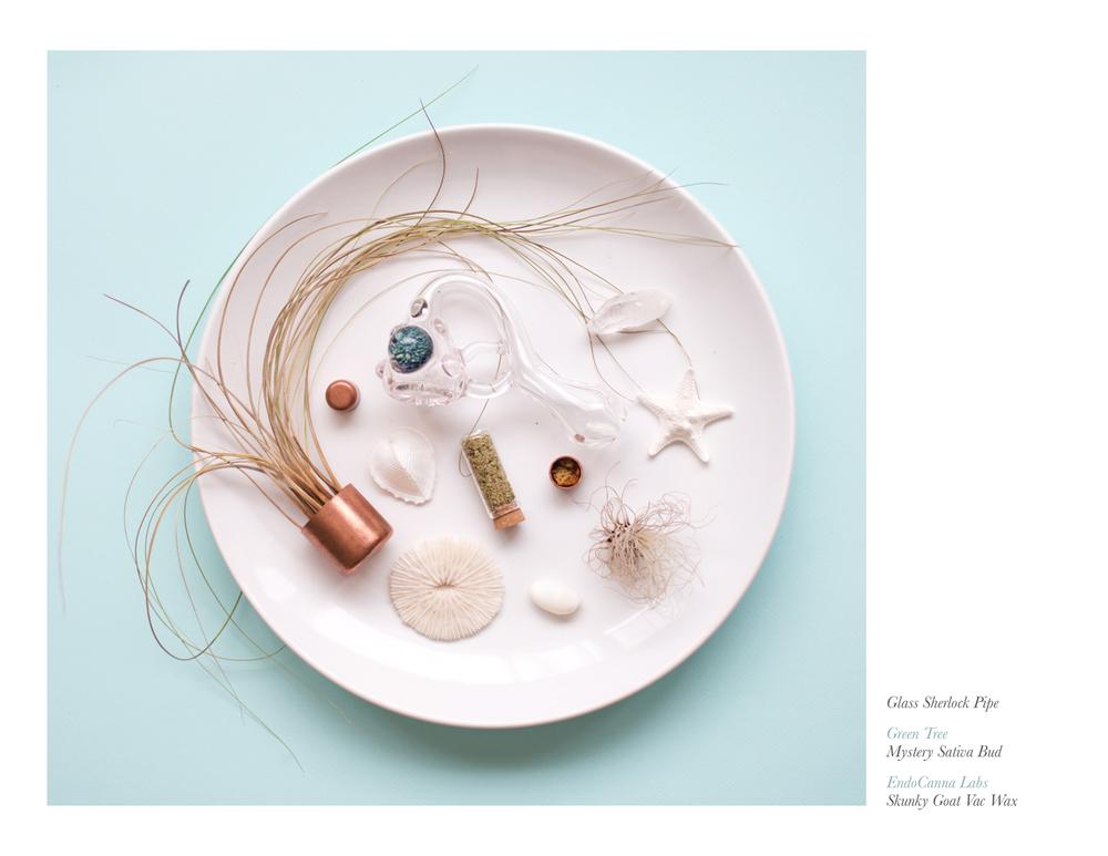 sea-sand-sativa-styleguide-cannacurious6.jpg