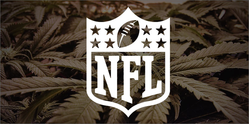 herbco-cover-image-kristen-williams-designs-NFL-cannabis-plants
