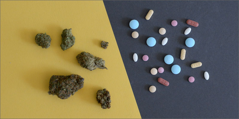 pills-vs-cannabis-kristen-williams-designs