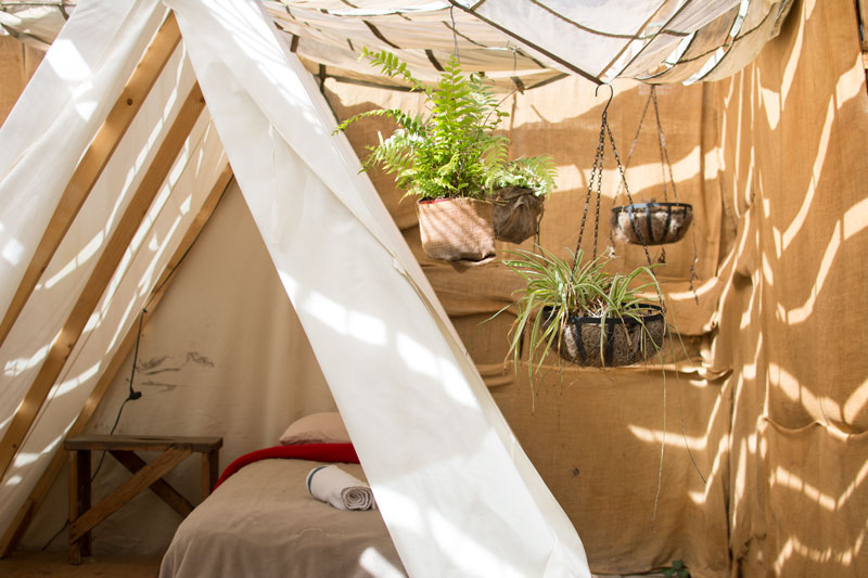 glamping-los-angeles-kristen-williams-designs