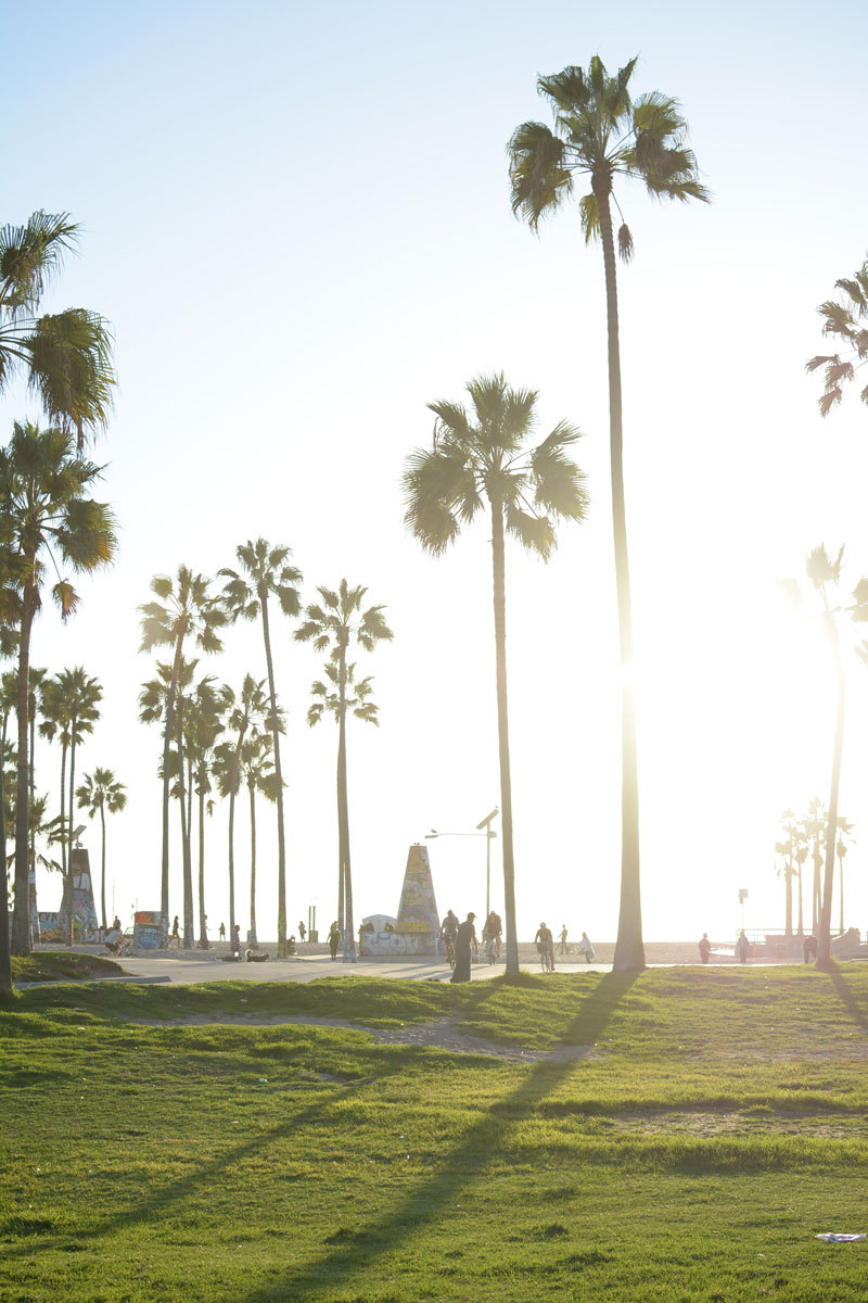 venice-beach-california-kristen-williams-designs
