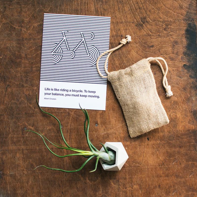 bag-print-balance-redo-800px.jpg