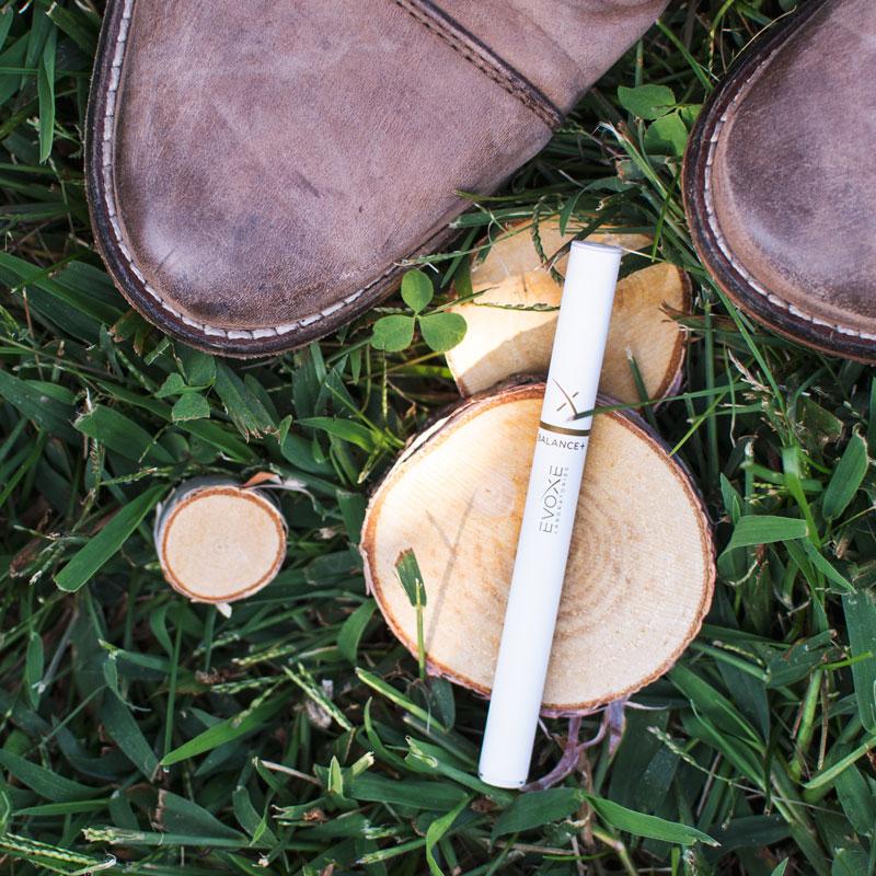 stumps-shoes-balanceplus-evoxe-800px.jpg