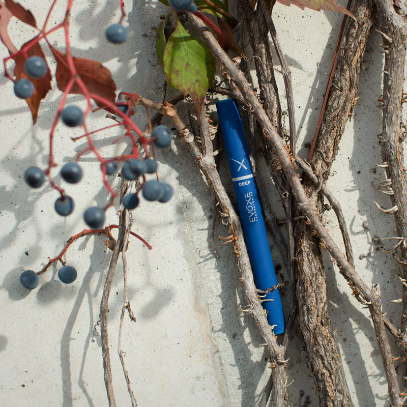 vines-berries-deep-evoxe-800px.jpg
