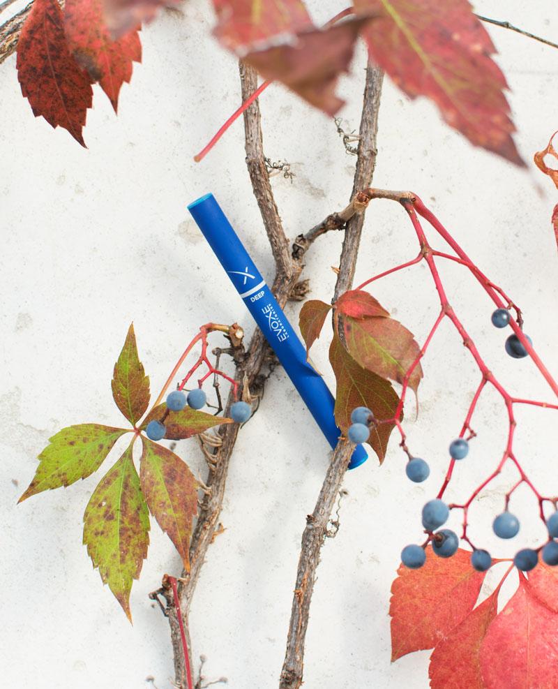 vines-leaves-deep-evoxe-800px.jpg