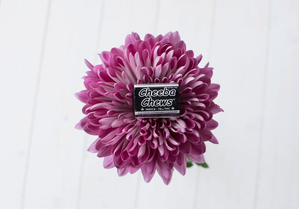 flower-black-cheebachews.jpg