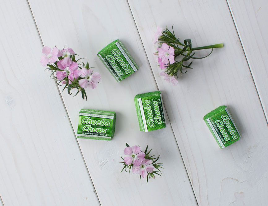 flowers-green-cheebachews.jpg