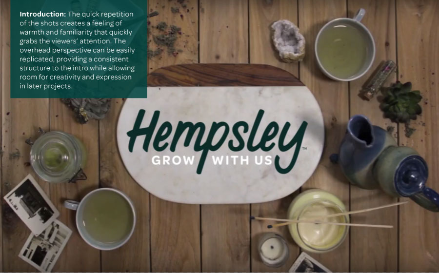 intro-hempsley-video-process.png