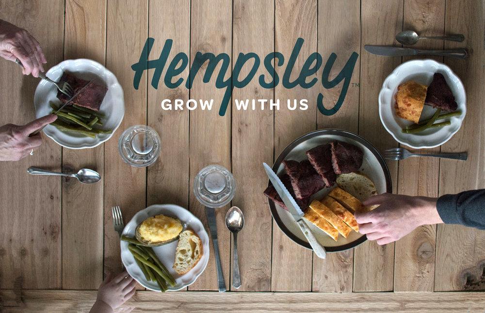 Hempsley,  Branding Design 2017