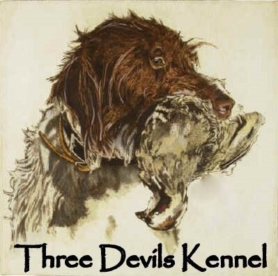 Three Devils Kennel