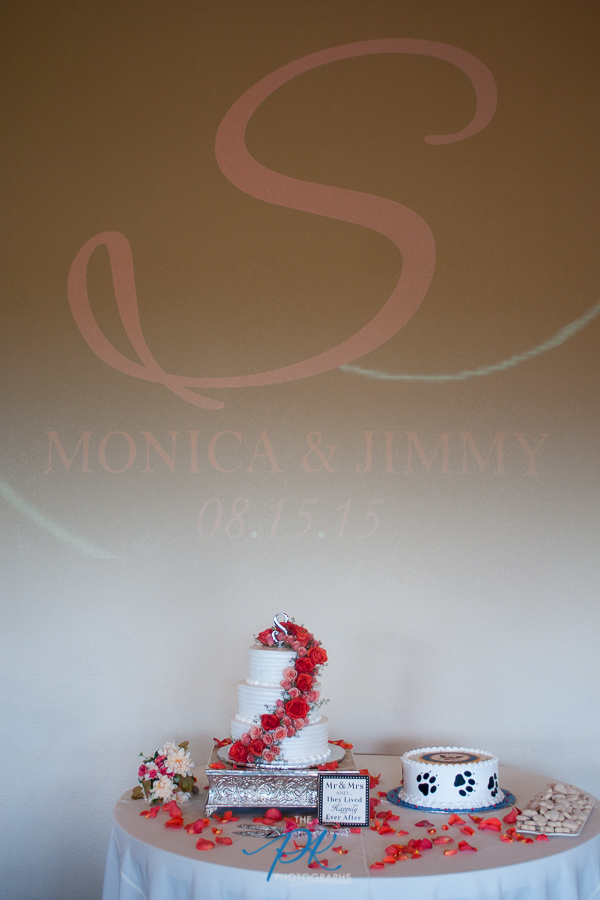 Above the cake table at their reception was their last initial, their names and wedding date.
