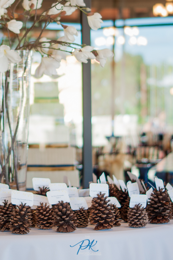Pine Cone Name Cards - San Antonio Wedding Photographer