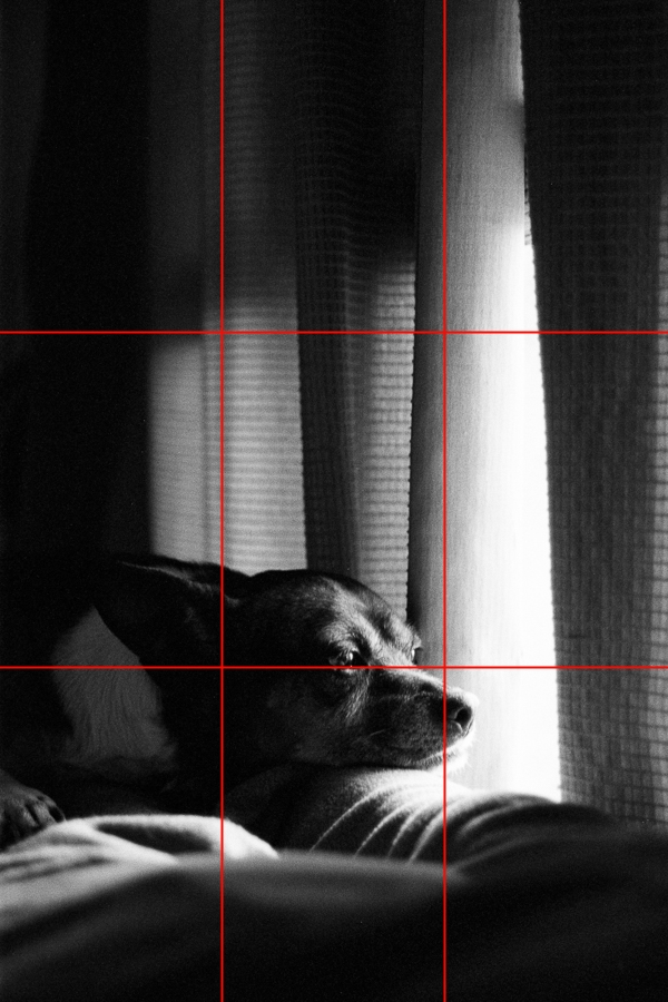 Example of use of the Rule of Thirds
